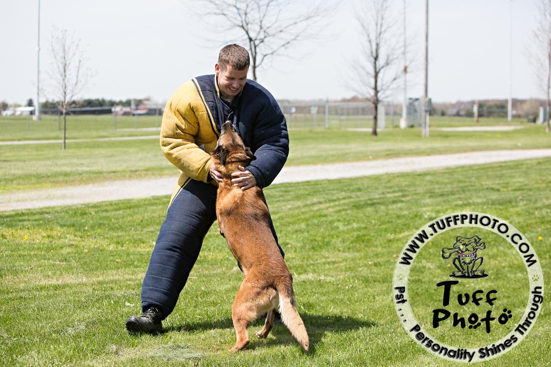 K9 training 2014-0002