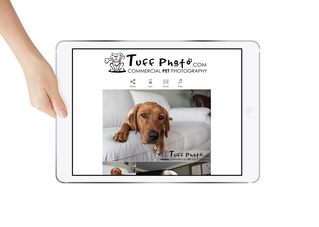 StickyAlbums_iPad_template
